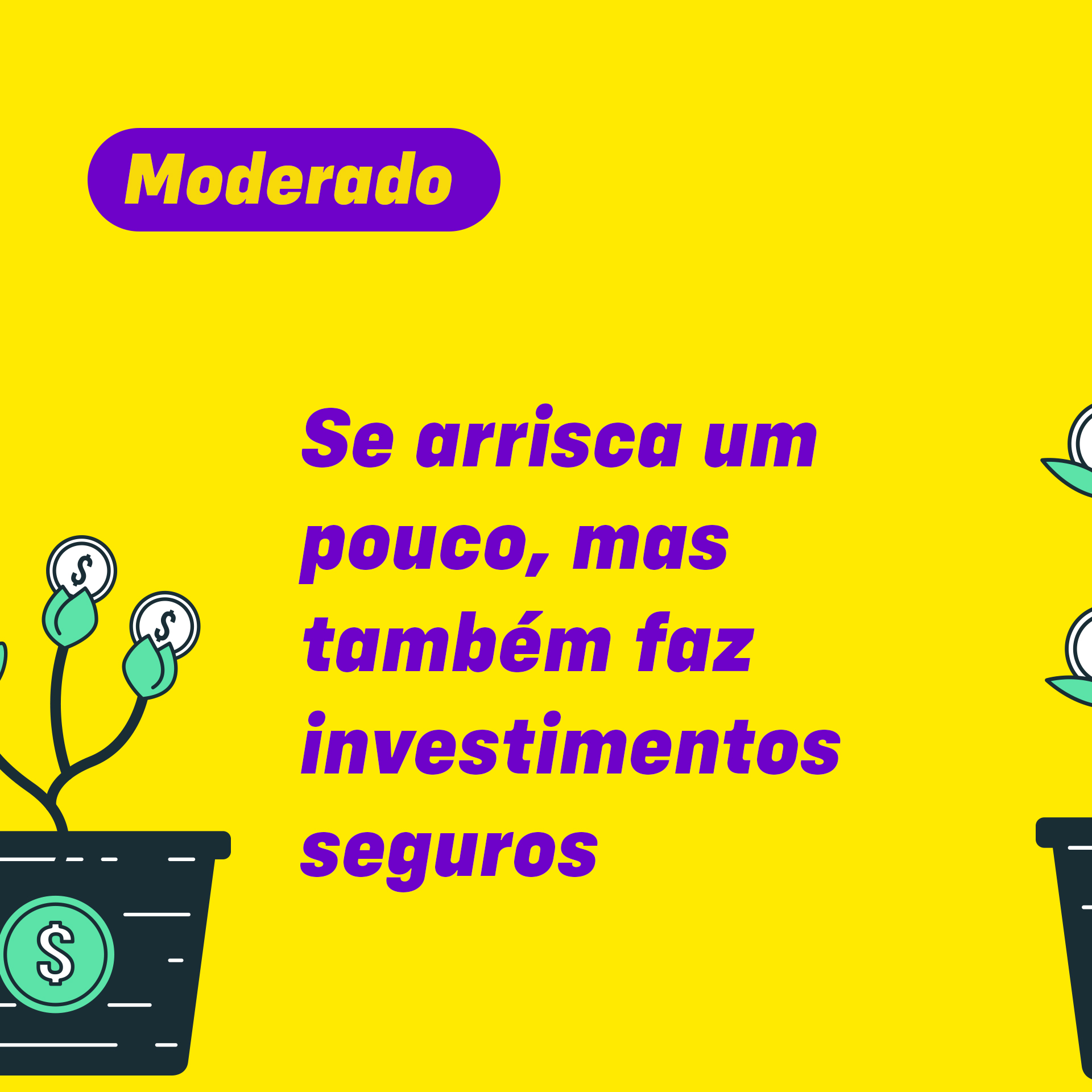 Perfil de investidor 3